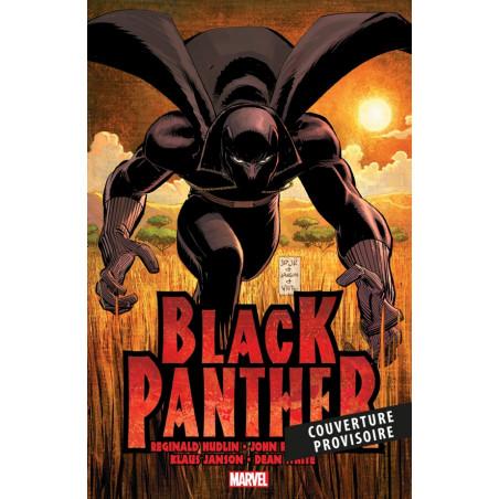 BLACK PANTHER: QUI EST LA PANTHÈRE NOIRE ?