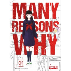 MANY REASONS WHY - TOME 1 (VF)