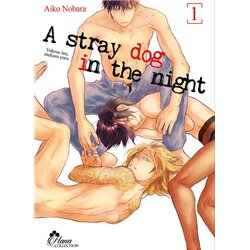 A STRAY DOG IN THE NIGHT - TOME 1