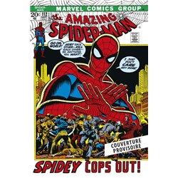 AMAZING SPIDER-MAN: L'INTÉGRALE 1972 (T10 NOUVELLE ÉDITION)