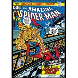 AMAZING SPIDER-MAN:...